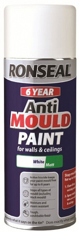 6 Year Quick Dry Anti Mould White - 400ml Aerosol