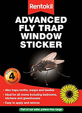 Advanced Fly Trap - 4 Pack